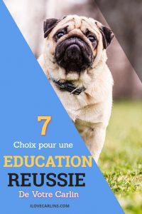 7 Choix pour une éducation réussie du Carlin