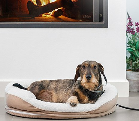 Meilleurs lits chauffants pour chiens  - Guide de l'acheteur et commentaires