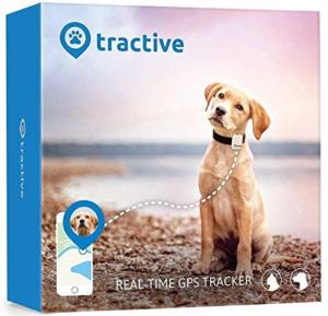 Meilleur Tracker GPS pour chien - Guide de l'acheteur