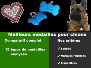 Meilleures médailles pour chien