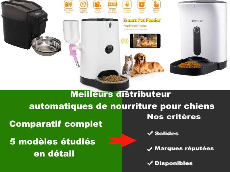 Meilleurs distributeurs de nourriture automatique pour chien – Guide de l'acheteur