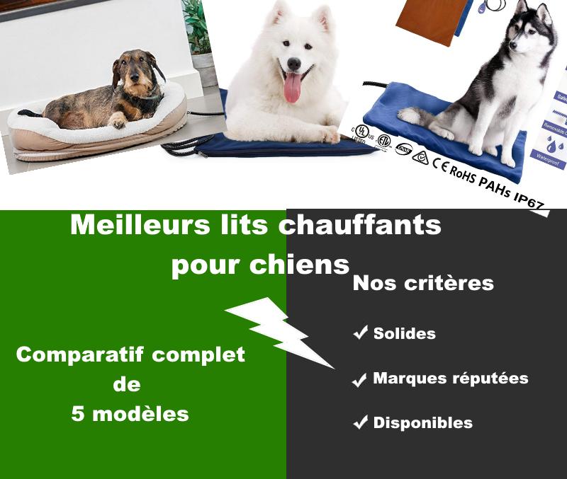 Meilleurs Lits Chauffants Pour Chiens Guide De L Acheteur Et